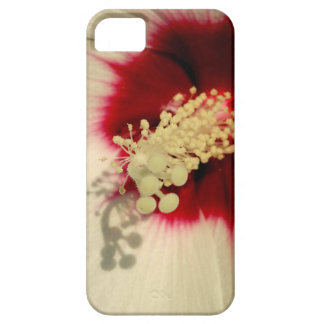 White Flower Photo Phone SE + iPhone 5/5S iPhone 5 Cover