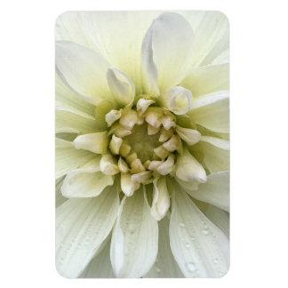 White Flower Rain Drop Floral Watercolor Magnet