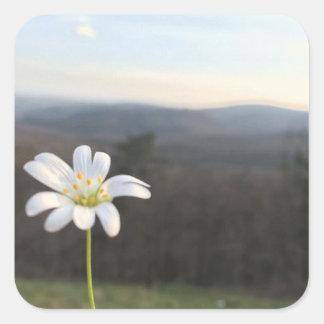 White Flower Square Sticker