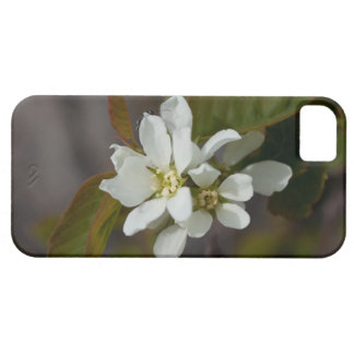 White Flower with Ant iPhone 5 Cover