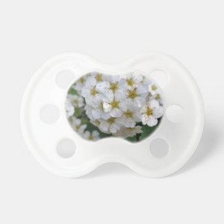 White flowers glowing pacifier