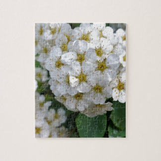 White flowers glowing puzzle