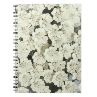 White Flowers Notebook