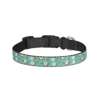 White flowers painting on turquoise background pet collar