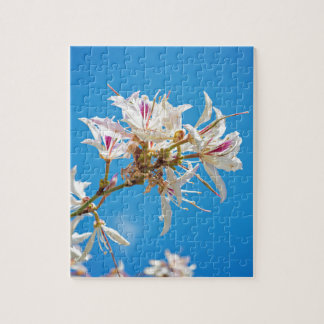 White flowers with pink over blue background jigsaw puzzle