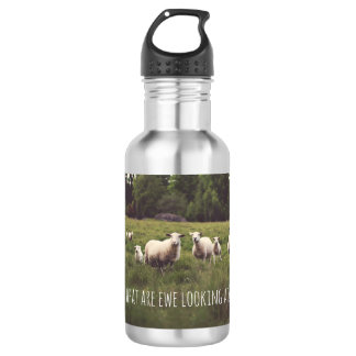 White Fluffy Sheep in Lush Green Pasture Photo 532 Ml Water Bottle