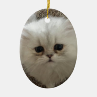 White Fluffy the kitty with sad eyes Ceramic Ornament