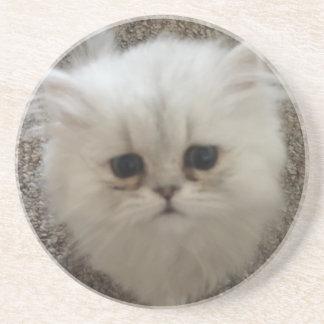 White Fluffy the kitty with sad eyes Coaster