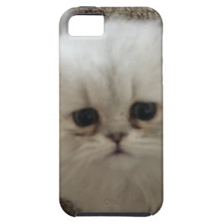 White Fluffy the kitty with sad eyes iPhone 5 Cases