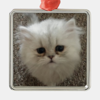 White Fluffy the kitty with sad eyes Metal Ornament