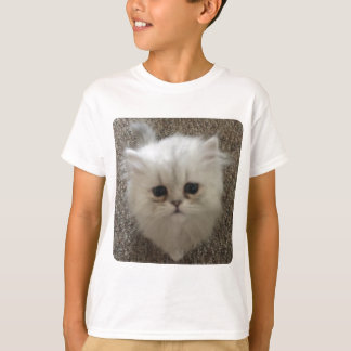 White Fluffy the kitty with sad eyes T-Shirt