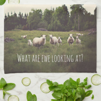 White Fluffy White Sheep & lambs in pasture photo Kitchen Towel