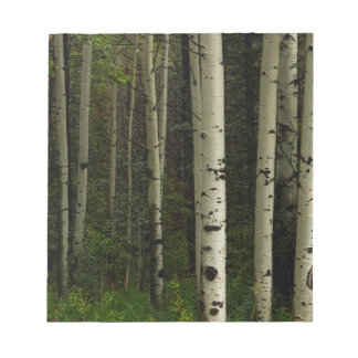White Forest Notepad