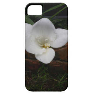 White Fresia Flower iPhone 5 Cover