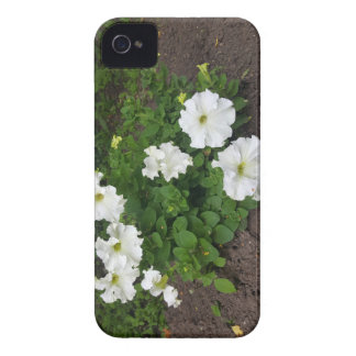 White garden flowers photograph iPhone 4 Case-Mate cases