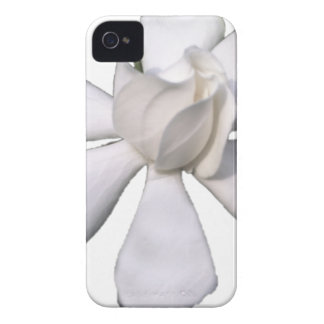 White Gardenia Bud 201711g iPhone 4 Case-Mate Case