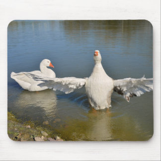 White geese wings opened mouse pad