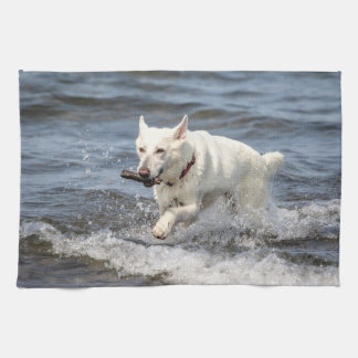 White German Shepard on Lake George Kitchen Towel
