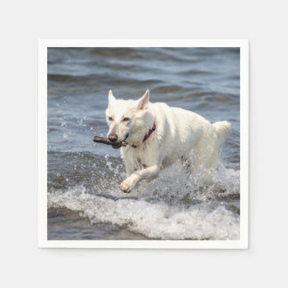 White German Shepard on Lake George Paper Napkin