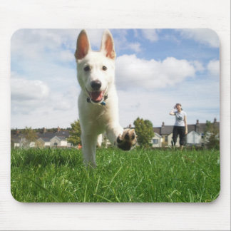 White German Shepherd at Play Mouse Pad