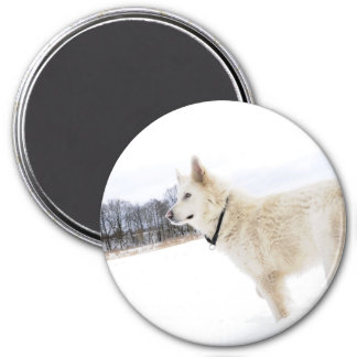 white german shepherd dog Magnet