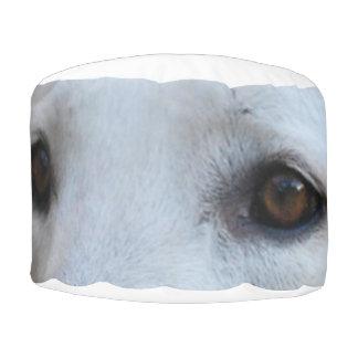 white german shepherd eyes pouf