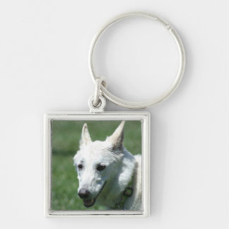 White German Shepherd Keychain