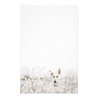 White German Shepherd Stationery
