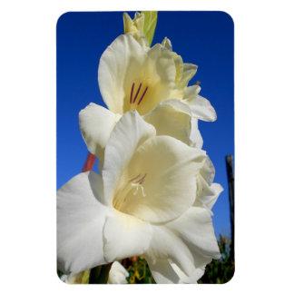 White Gladiolus And The Blue Sky Rectangular Photo Magnet