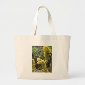 White grapes on the vine . Tuscany, Italy Large Tote Bag