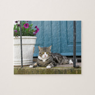White Gray Tiger Cat on Front Porch Blue Door Jigsaw Puzzle