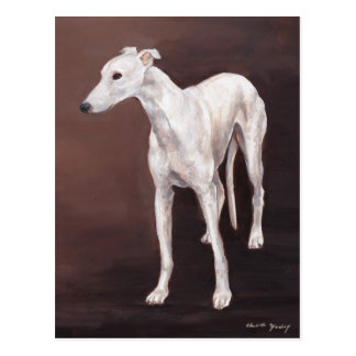 White Greyhound Dog Art Postcard