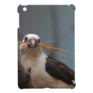 White-headed Buffalo Weaver iPad Mini Cover