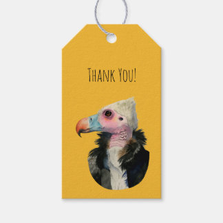 White-Headed Vulture Watercolor Painting Pack Of Gift Tags