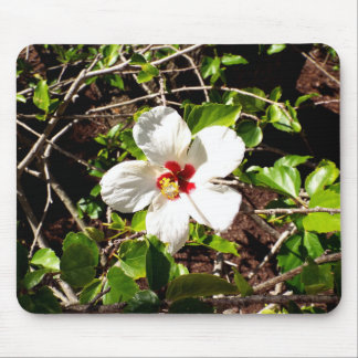 White Hibiscus Mouse Pad