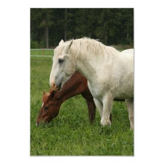 "White Horse Animal 3.5"" X 5"" Invitation Card"