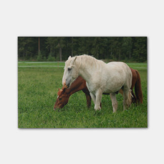 White Horse Animal Post-it® Notes