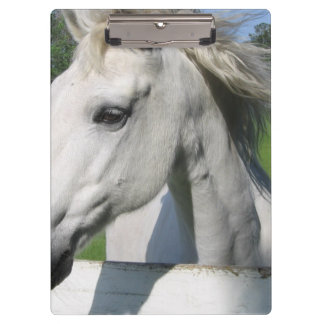 White Horse Clipboard