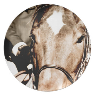 White Horse Head Party Plate