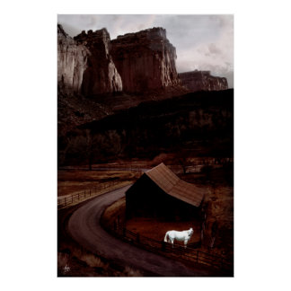 White Horse in the Utah Canyonlands Poster