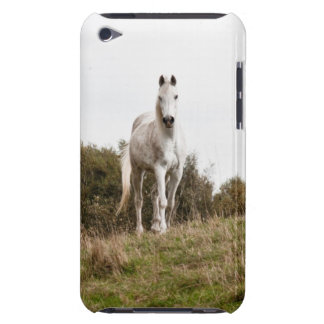 White horse iPod touch Case-Mate case