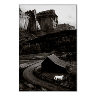 White Horse Monochrome in Canyonlands Poster