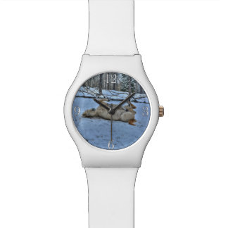 White Horse Rolling in Winter Snow Wrist Watches