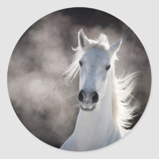 White horse round sticker
