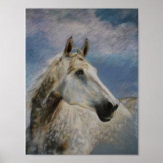 White horse/Schimmelpferd Poster
