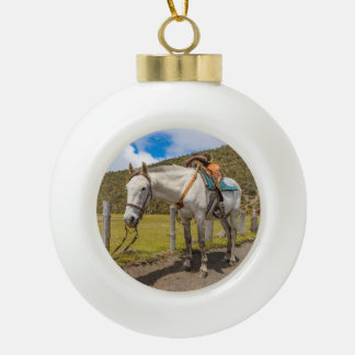 White Horse Tied Up at Cotopaxi National Park Ceramic Ball Christmas Ornament
