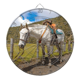 White Horse Tied Up at Cotopaxi National Park Dartboard