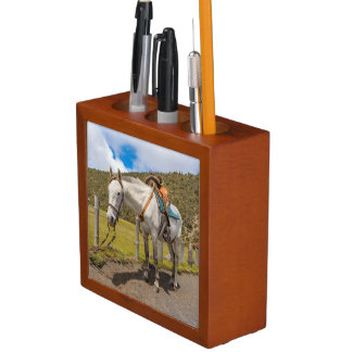 White Horse Tied Up at Cotopaxi National Park Desk Organizer