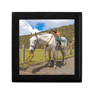 White Horse Tied Up at Cotopaxi National Park Gift Box
