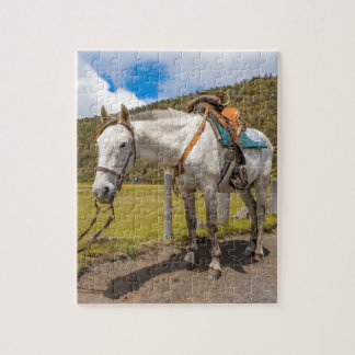 White Horse Tied Up at Cotopaxi National Park Jigsaw Puzzle